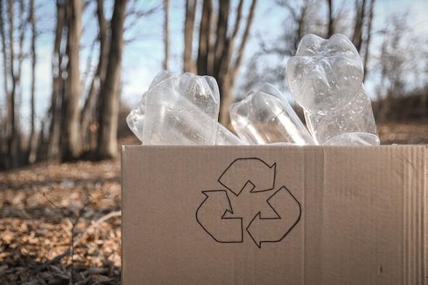 Jonge vrijwilligers die gebied in hout schoonmaken, met houd plastic fles bij openbaar park.