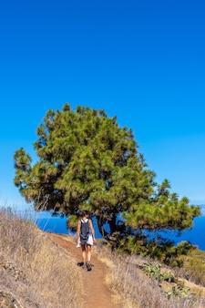 Jonge vrouw bij een drakenboom op het las tricias-pad in het noorden van het eiland la palma
