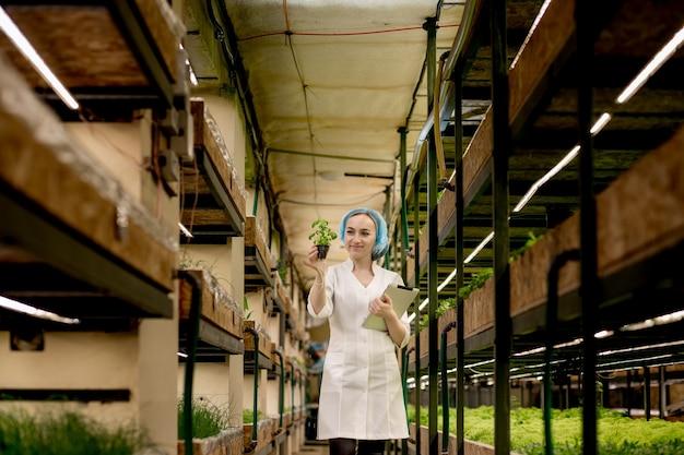 Jonge vrouw biotechnologist met behulp van tablet om de kwaliteit en kwantiteit van groente in hydrocultuur boerderij te controleren
