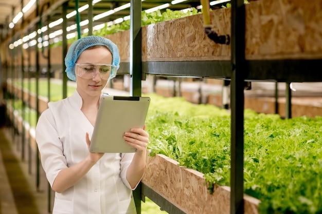 Jonge vrouw biotechnologist met behulp van tablet om de kwaliteit en kwantiteit van groente in hydrocultuur boerderij te controleren.