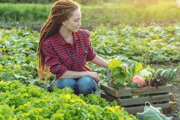 Jonge vrouw boer agronoom verzamelt verse groenten