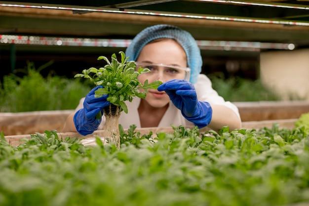 Jonge vrouw boer wetenschapper analyseert en bestudeert onderzoek naar biologisch