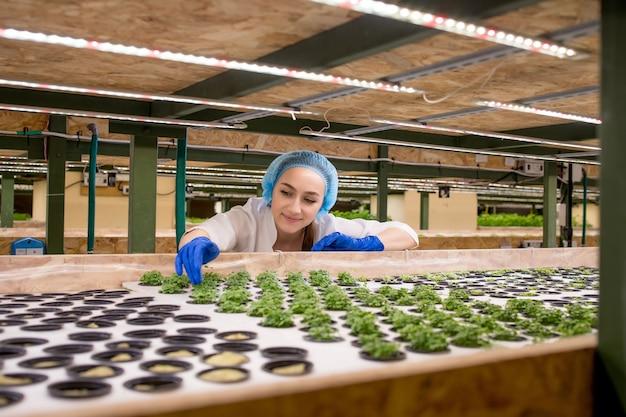 Jonge vrouw boer wetenschapper analyseert en bestudeert onderzoek naar biologische, hydrocultuur groentetuinen