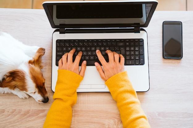 Jonge vrouw die aan laptop werkt die thuis, beschermend masker, leuke kleine hond draagt. thuis werken