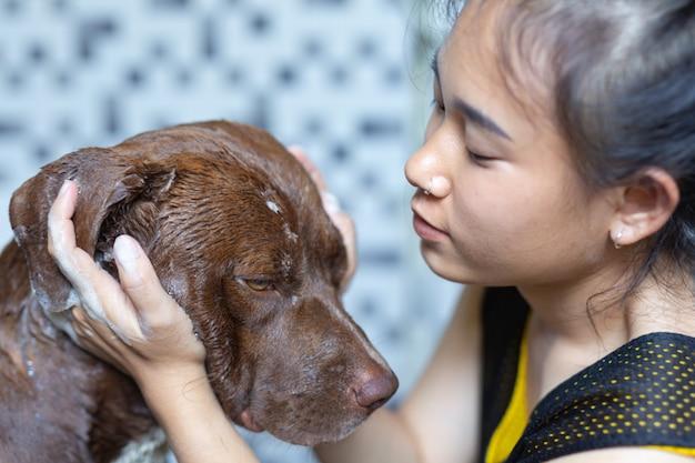 Jonge vrouw die een bad neemt met haar favoriete hond, het concept van de wereldhondliefde.