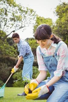 Jonge vrouw die een jong boompje in tuin en man schoonmakend gras planten