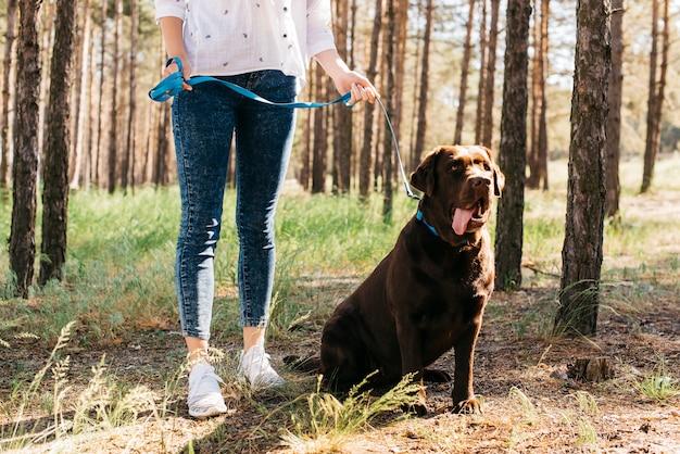 Jonge vrouw die een picknick met haar hond doet