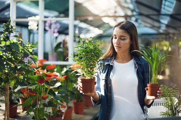 Jonge vrouw die tussen planten koos om te gebruiken op haar landschapsontwerp