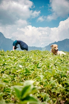 Jonge vrouw doet yoga oefeningen in een natuurlijke omgeving met een hond zittend op een gras