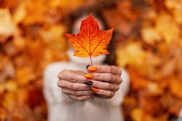 Jonge vrouw in een gebreide witte trui houdt een oranje-gouden herfstblad in haar handen. vrouw met mooie manicure ligt op de gele bladeren in het park. focus op vrouwelijke handen met een herfstblad.