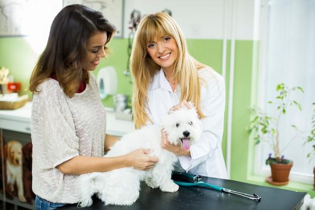 Jonge vrouw met een hond bij dieren arts