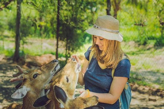 Jonge vrouw mooie herten voederen uit handen in een tropische dierentuin.