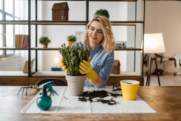 Jonge vrouw verandert de bodem in huisplanten