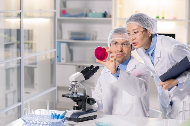 Jonge vrouwelijke apotheker en haar collega kijken naar nieuwe chemische stof in petrischaal tijdens het bestuderen van de kenmerken ervan