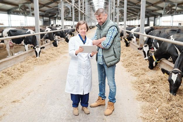 Jonge vrouwelijke boer in whitecoat scrollen in tablet tijdens het bespreken van online informatie met collega binnen melkveebedrijf