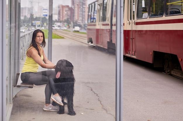 Jonge vrouwelijke eigenaar met briard zit op het station van het openbaar vervoer met tram op achtergrond.