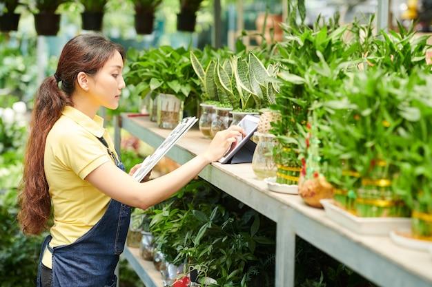 Jonge vrouwelijke plantenwinkel werkt met document- en tabletcomputer die bloemen op planken controleert en online bestellingen van klanten accepteert