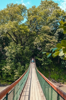Jonge vrouwelijke wandelaar met grote rugzak die in bossen reist en in de zomer over de brug loopt.
