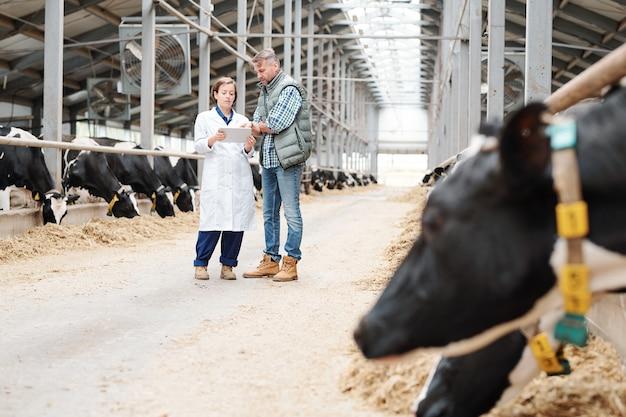 Jonge vrouwelijke werknemer van grote boerderij toont haar collega online informatie over nieuwe melkrassen op werkvergadering