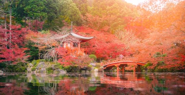 Jonge vrouwen die kimono dragen bij daigo-ji-tempel met kleurrijke esdoornbomen in de herfst