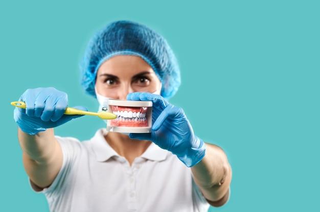 Jonge vrouwentandarts die een kaakgips en tandenborstel houdt en bij camera toont hoe tanden te poetsen. blauwe achtergrond