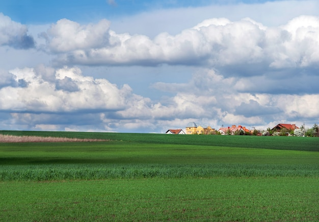 Jonge wintertarwe en het dorp aan de horizon en luchtwolken
