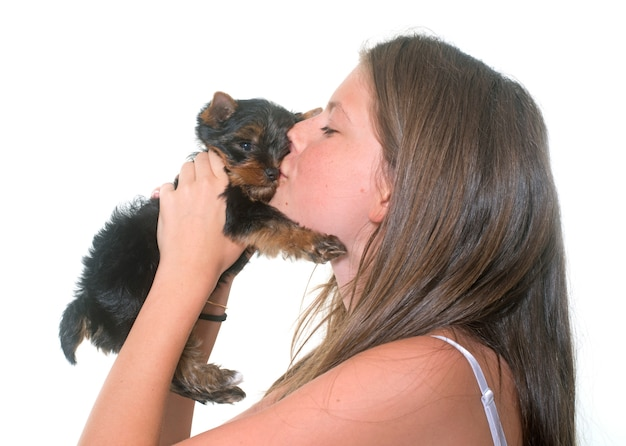 Jonge yorkshire terrier en kind