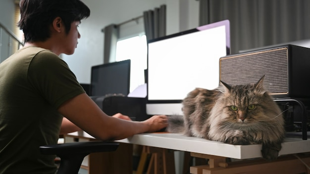 Jongeman freelancer die met de computer werkt en met zijn kat in de woonkamer zit.