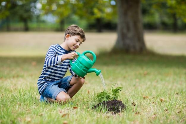 Jongen die een jonge plant water geeft