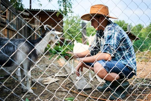 Jongen die het geit verse gras in het dorp voedt