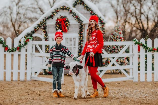 Jongen en meisje poseren met een stier tegen de achtergrond van de kerstboerderij. kopieer ruimte.
