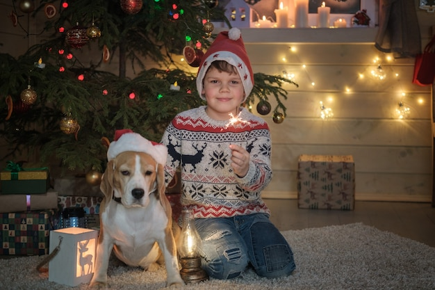 Jongen in een kerstmuts en een beagle hond licht sterretjes in de buurt van een kerstboom