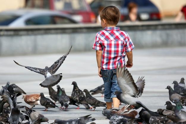 Jongen loopt in de buurt van de zwermen duiven