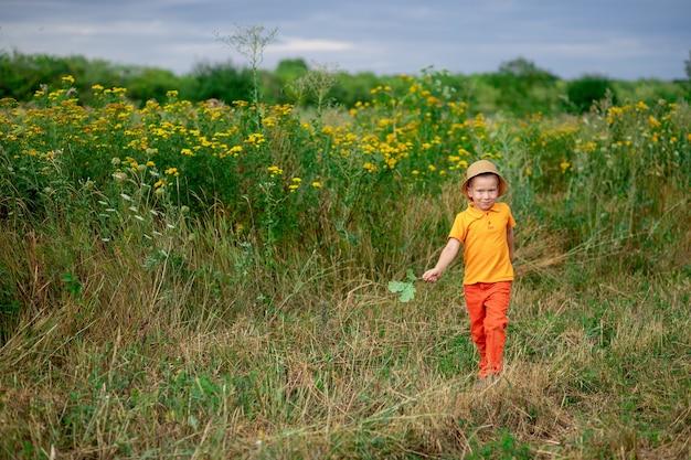 Jongen loopt over het veld in de zomer