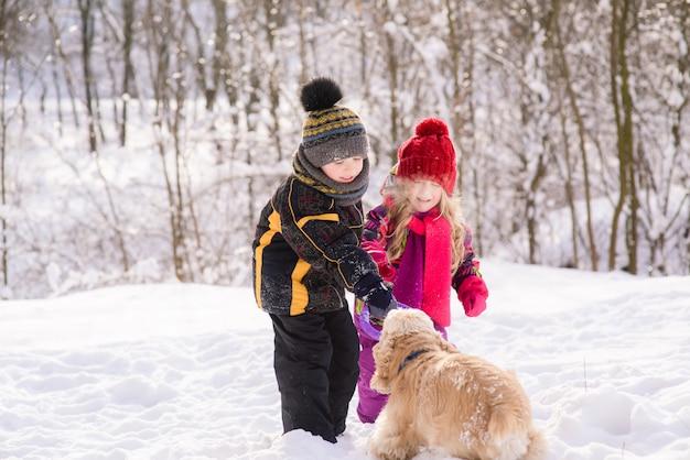 Jongen, meisje geeft ronde ring speelgoed aan de hond