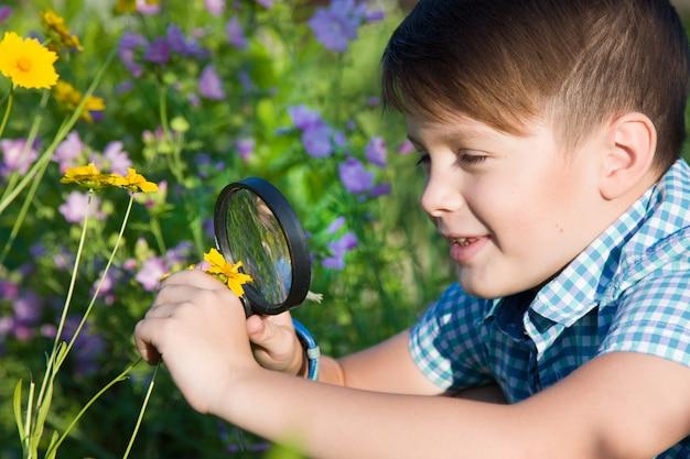 Jongen met vergrootglas in de zomertuin