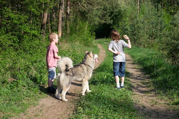 Jongen met zijn hond malamute op een wandeling in het bos