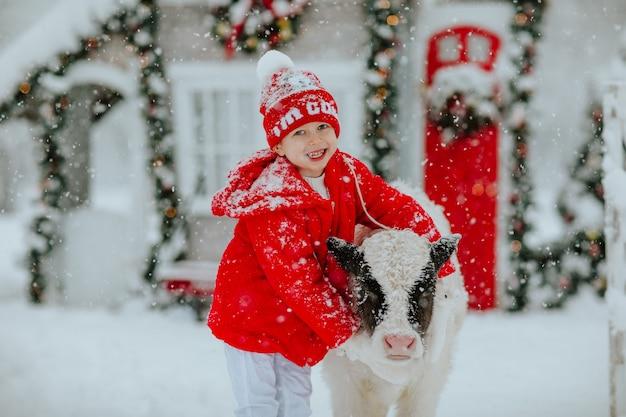 Jongen poseren met zwarte en witte kleine stier op de winterboerderij met kerstdecor.