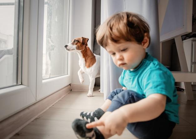 Jongen speelt met zijn jack russell terrier hond.