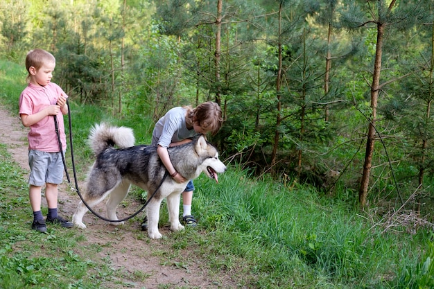 Jongens waiking met hun hond malamute op een wandeling in het bos