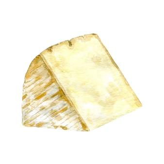 Kaas met schimmel