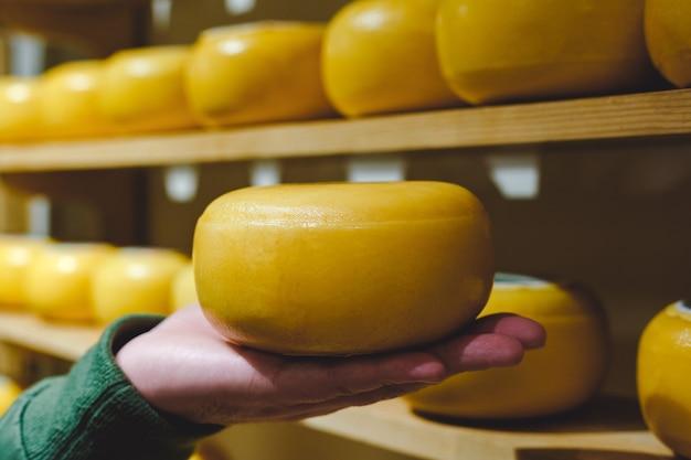 Kaaskop in gele was op mannelijke handpalm. man met een kop ronde kaas, tegen de achtergrond van kaaspakhuis of kaasfabriekproductie