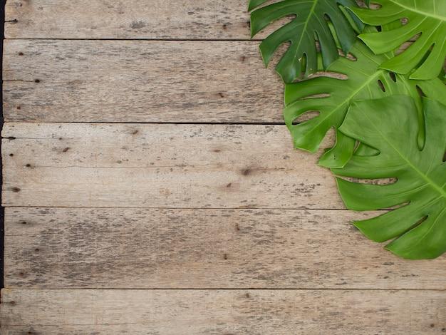 Kader van tropische bladeren monstera op oude houten achtergrond. ruimte voor tekst. plat leggen, bovenaanzicht