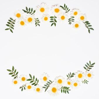 Kader van witte bloemen met bladeren