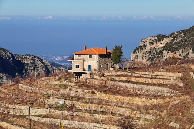 Kadishavallei in bergen van libanon