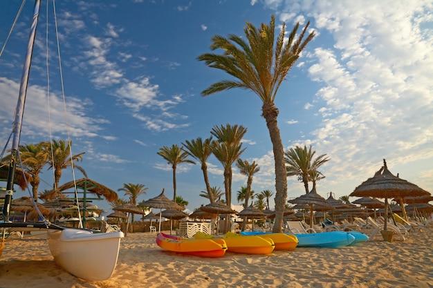 Kajaks en catamaran op het strand