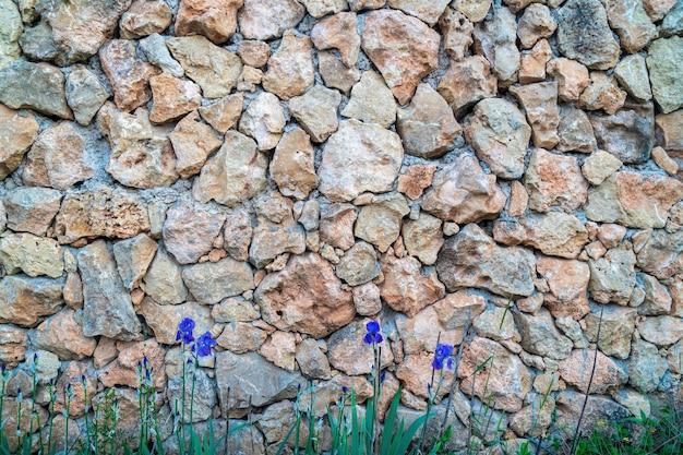 Kalksteen metselwerk. het oppervlak is versierd met natuurlijk materiaal. de muur is gemaakt van wilde steen.