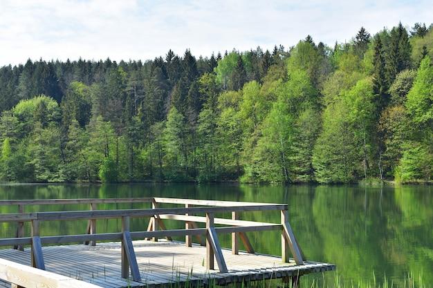 Kalm bosmeer met groene bomenbezinning, houten brug, kalmte