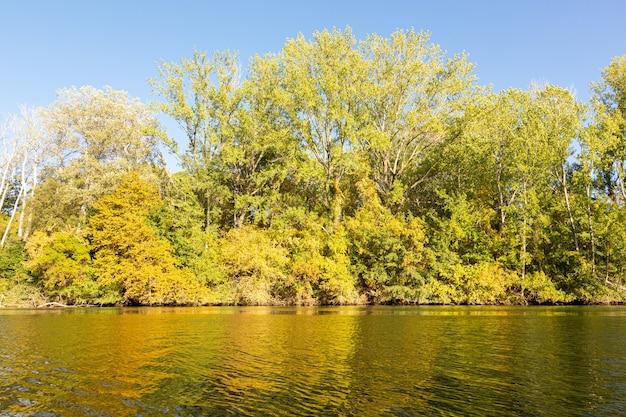 Kalme rivier in de herfst met gele bladeren