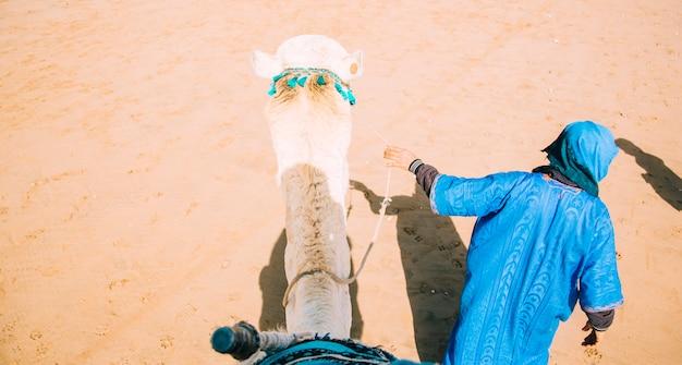 Kameel in woestijnlandschap in marokko